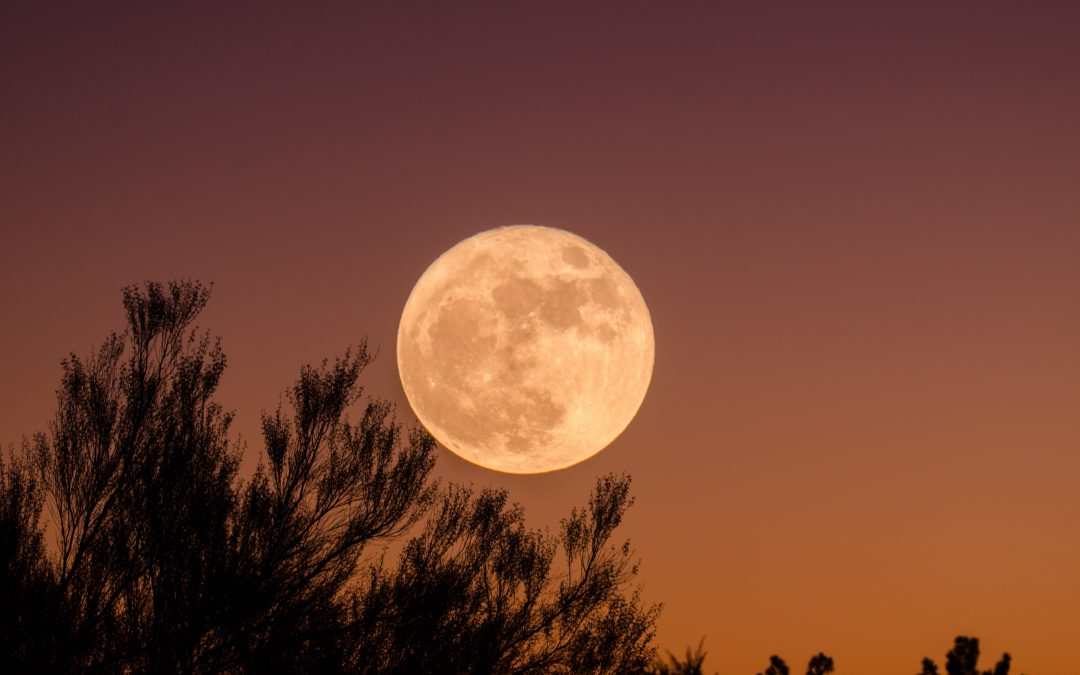 A December Full Moon Yoga Practice for Reflection