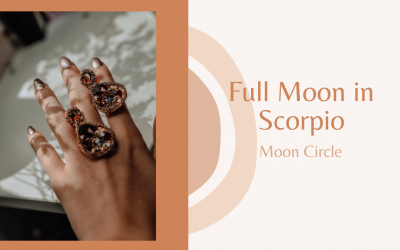 Full Pink Moon in Scorpio : Energy Reading & Meditation Circle